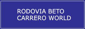 Trânsito Agora na Rodovia Beto Carrero World
